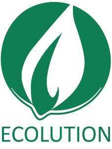 Ecolution Logo_square_green