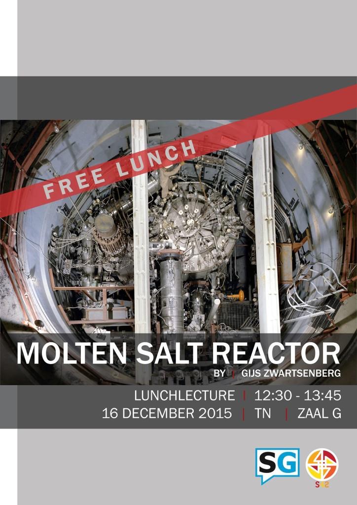 S4S Molten Salt Reactor